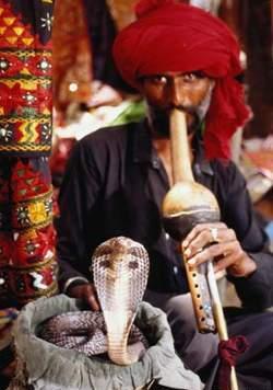праздники индия