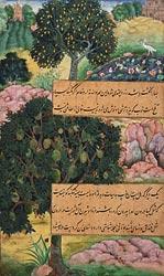 Миниатюра эпохи Акбара